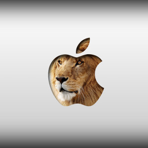 Mac OS X Lion Installation